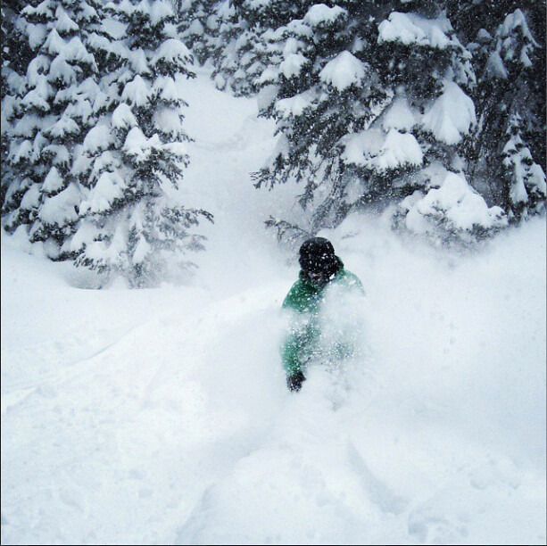 powder at Wolf Creek