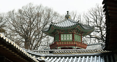 Changdeokgung_Palace_Snow_08