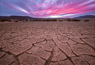 Death Valley Cracks