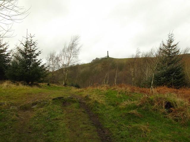 breidden hill 020