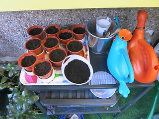pots started