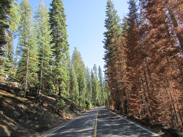 Tahoe'14 491