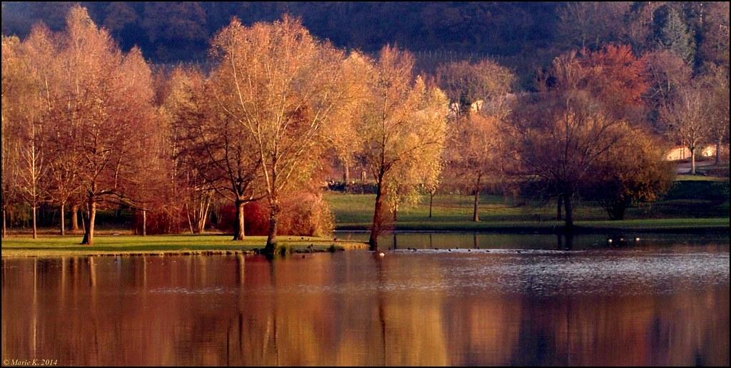 Palette de couleurs sur le lac + 1 M.àJ. 16300934041_80b49037d9_b