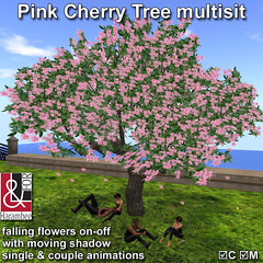 Spring Cherry Tree multisit
