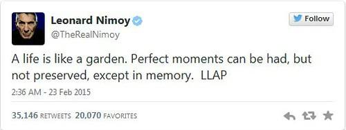 LN last tweet