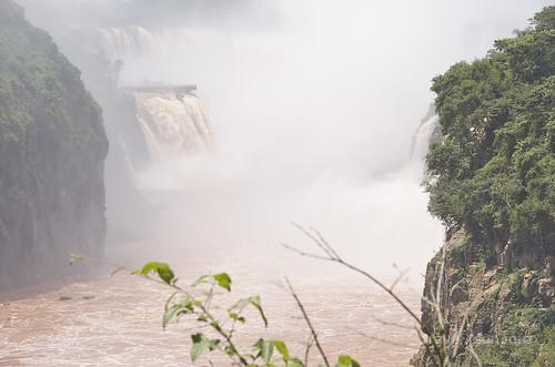 【写真】2015 世界一周 : イグアスの滝・ロワートレイル(1)/2020-09-13/PICT7489