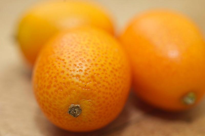 77/365. kumquat!