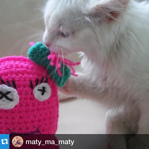 #Repost @maty_ma_maty with @repostapp.@katealinari ・・・It's true Love ❤ È vero amore ❤ @katealinari #cat #cats #TagsForLikes #catsagram #catstagram #instagood #kitten #kitty #kittens #pet #pets #animal #animals #petstagram #petsagram #photoofth