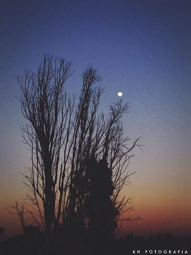 La luna a la luz del atardecer