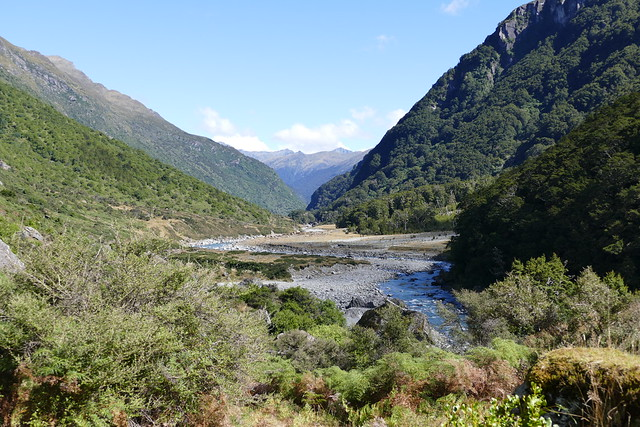 fly fishing the south island cedar lodge