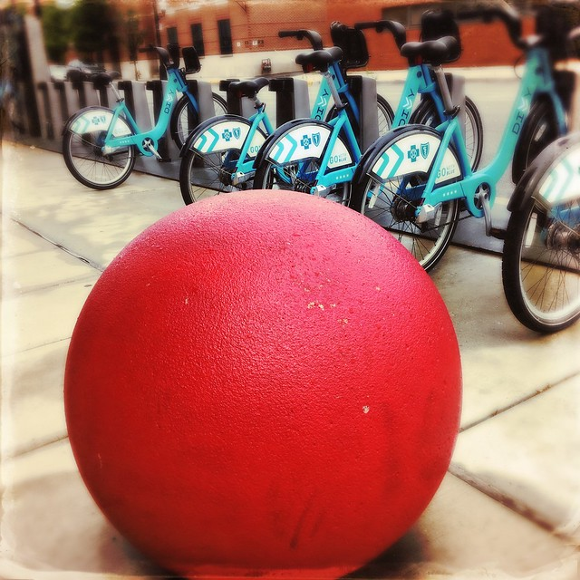 Divvy and a Red Ball