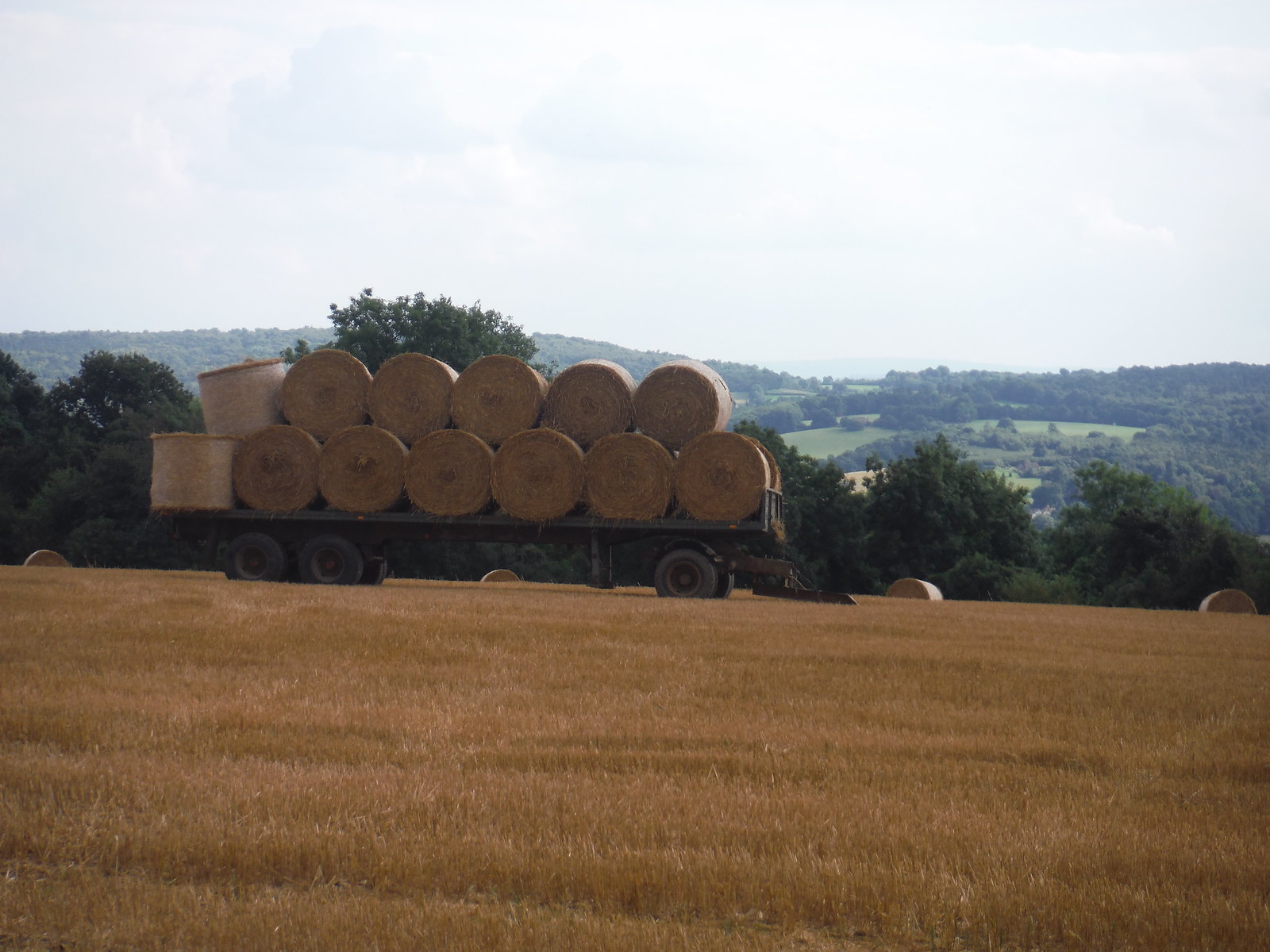 Bales with Views SWC Walk 111 Caterham to Knockholt (North Downs Way)