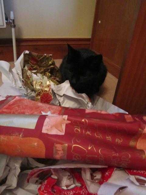 Christmassy Flo 2014 (7)