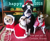 christmas love from four small dogs