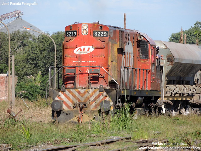 ALCO RSD16 8229