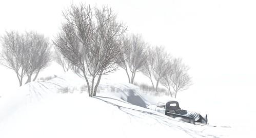 Where's Dim Sum? #279 - The stark silence of snow