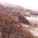 Stinson Beach by matt.hintsa