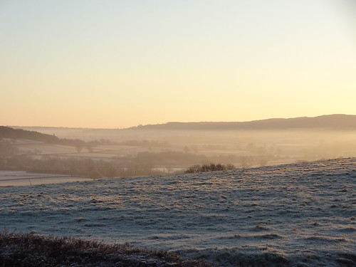 Frosty Morning at Forty Acres