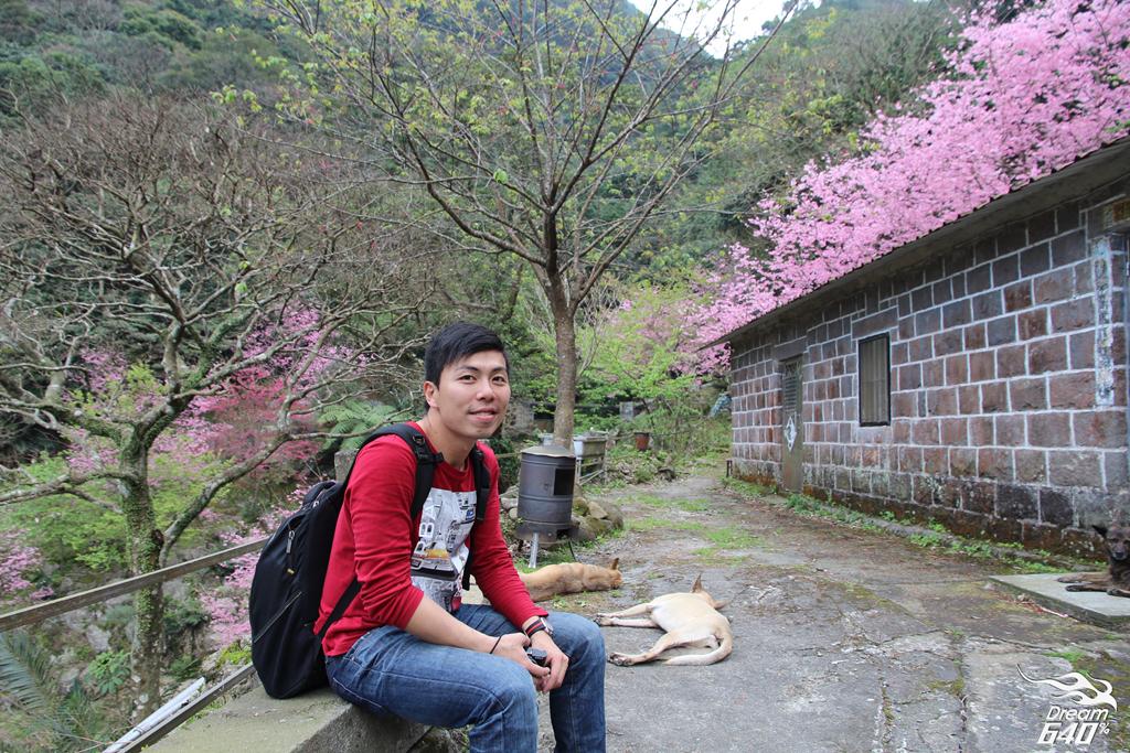 2015楓樹湖走進桃花源24