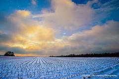 Dawn After a Rare Snowfall