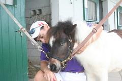 mare(0.0), horse(0.0), animal(1.0), mane(1.0), halter(1.0), pack animal(1.0), pony(1.0),