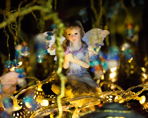 20150129-09_Faeries with Fairy  Lights _ Still Life