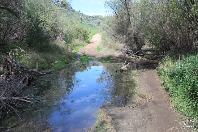 las virgenes canyon 10