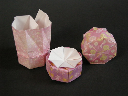 Double-twist heptagonal boxes