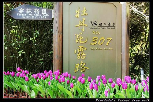 杉林溪 (27)