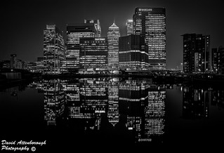 Canary Wharf at night B&W