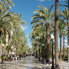 Alicante, el paseo