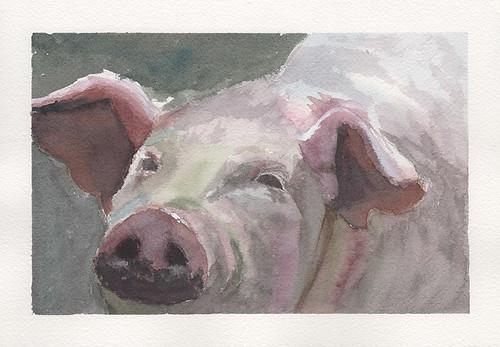 Original art for sale buy asi wind watercolor painting