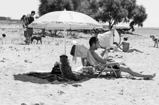 Image of Platja de L'Horta de Santa María. street bw beach dogs monochrome 35mm spain nikon candid catalonia soul moment cambrils tarragona collecting tog decisive d7000 streettog
