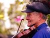 The Fiddler by James Billson