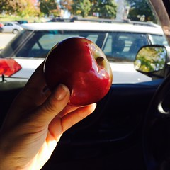 This apple was on top of that Subaru