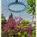 private gardens/gaerten: Garten G in N