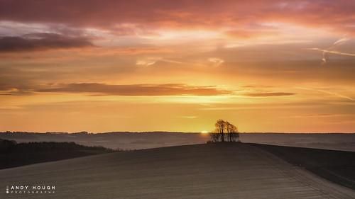 morning trees england orange sun sunrise landscape countryside unitedkingdom sony hills tamron wallingford wittenhamclumps southoxfordshire barrowhill a99 sonyalpha andyhough sp70200 slta99v andyhoughphotography