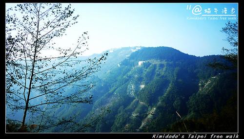 杉林溪 (1)