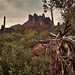 Three Sisters in the Superstition Mts, Apache Junction, AZ