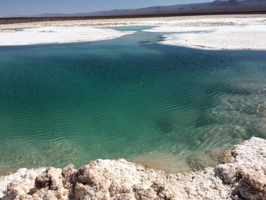 Laguna escondida - San Pedro de Atacama - Chile