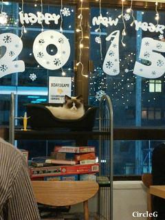 CIRCLEG 語音信息 總有兩派人各持己見 長洲 中環 摩天輪 YAHOO 旺角 貓CAFE (37)