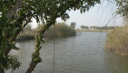 台南葫蘆埤。