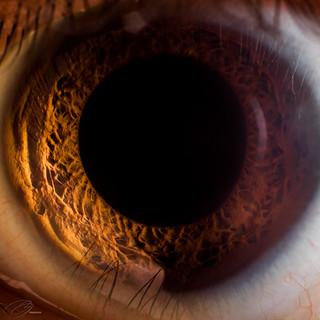 Eye No. 8 (Self Portrait)