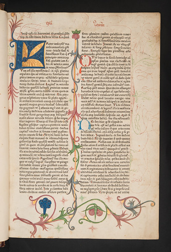 Decorated and illuminated page in Biblia