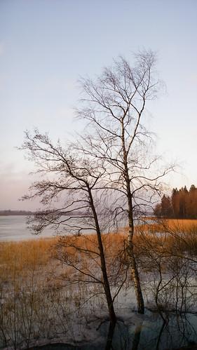 windows sunset sun lake nature mobile espoo finland landscape nokia sundown 1020 järvi auringonlasku carlzeiss aurinko uusimaa kevät lumia pitkäjärvi laaksolahti phoneography pureview lumiagraphy lumia1020
