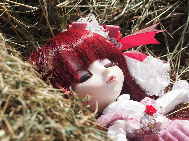Rose also enjoys the hay xD