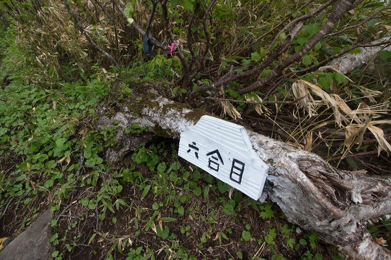 20150614-北海道羊蹄山(2日目)-0269.jpg
