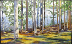 trees between the sun and the water: douglas rutzen