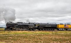 UP Steam Train PDXMN2-20
