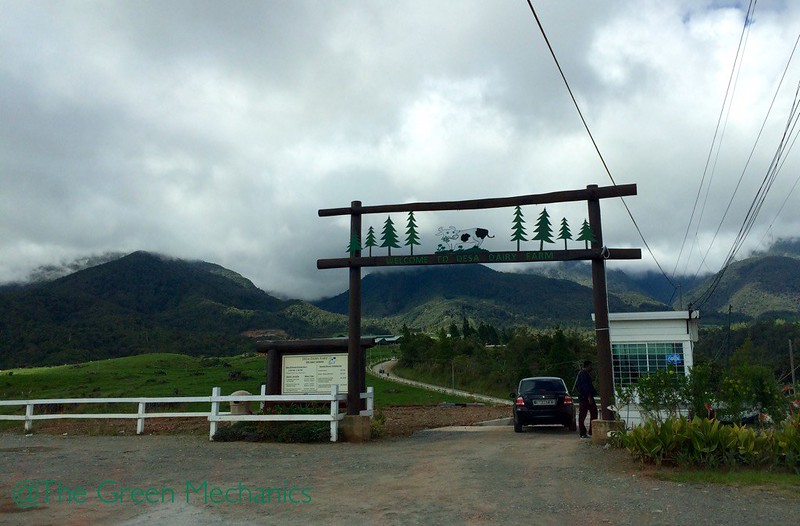 Gateway to Desa Cattle dairy farm, Kundasang Sabah